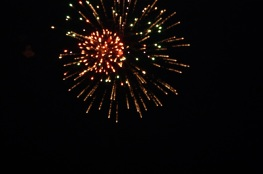 feu_artifice_2010_9929