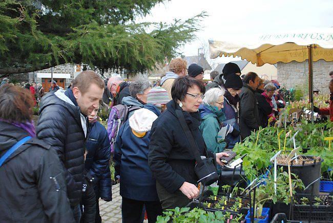 of_marche_aux_plantes_20150324_d