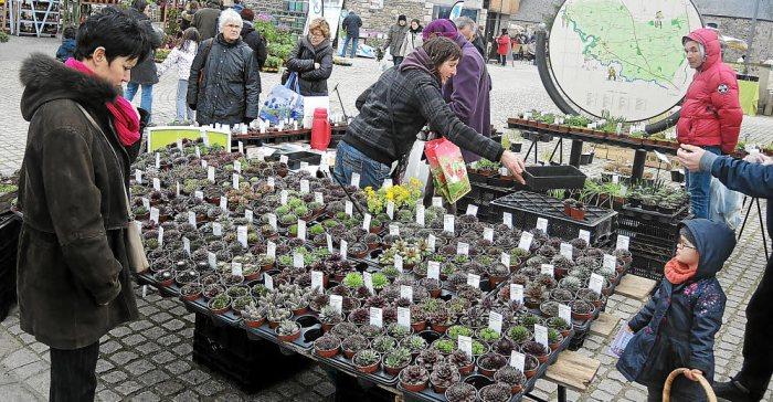 Le public était au rendez-vous hier du Marché régional des plantes d'Andel