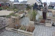 edition_2016_22_jardinexotiqueroscoff_5462