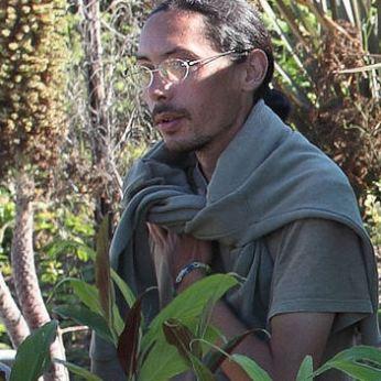 cdf_marche_plantes_2017_jardin_tropical_a