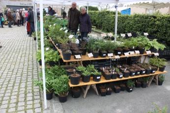 marche_aux_plantes_2017_27_ecoutesilpleut_0420