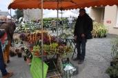 marche_aux_plantes_2017_canal_0463