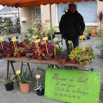 marche_aux_plantes_2017_canal_0465