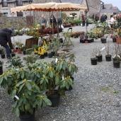 marche_aux_plantes_2017_canal_0468
