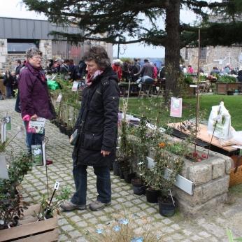 marche_aux_plantes_2017_11_hulotte_0297