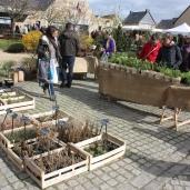 marche_aux_plantes_2017_30_jardin_dherbes_0557