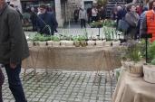 marche_aux_plantes_2017_30_jardin_dherbes_0561