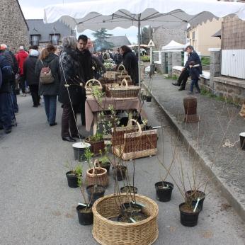 marche_aux_plantes_2017_34_osierie_guerin_0587