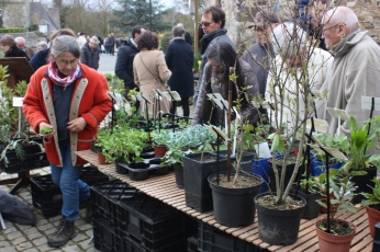 marche_aux_plantes_2017_47_herbarius_0678