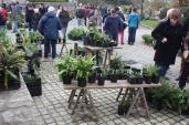 marche_aux_plantes_2017_48_brin_dherbes_0679