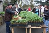 marche_aux_plantes_2017_4_gergaud_0241
