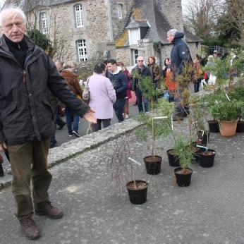 marche_aux_plantes_2017_7_botanique_armoricaine_0268