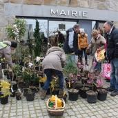marche_aux_plantes_2017_25_leclercq_0410
