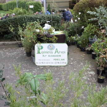 marche_aux_plantes_2017_8_arven_0274
