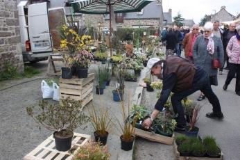 marche_aux_plantes_2017_37_vegetal_0601