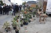 marche_aux_plantes_2017_37_vegetal_0603