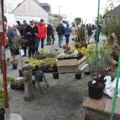 marche_aux_plantes_2017_37_vegetal_0604