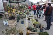 marche_aux_plantes_2017_37_vegetal_0605
