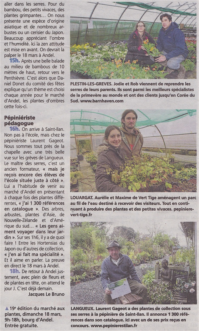 lp_20180315_marche_plantes_c