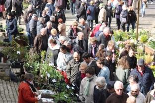 Marche-regional_aux_plantes_2018_0536