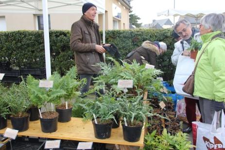 marche_plantes_20180318_28_jardin_ecoute_pleut_8352