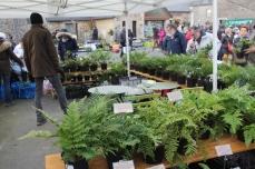 marche_plantes_20180318_28_jardin_ecoute_pleut_8354