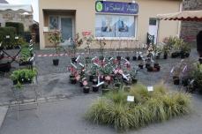 marche_plantes_20180318_30_pepiniere_du_canal_8382