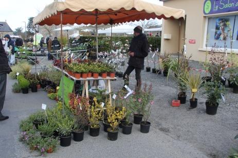 marche_plantes_20180318_30_pepiniere_du_canal_8386