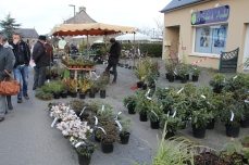 marche_plantes_20180318_30_pepiniere_du_canal_8387