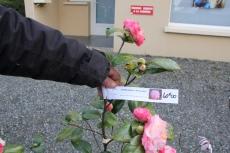 marche_plantes_20180318_30_pepiniere_du_canal_8390