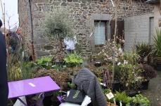 marche_plantes_20180318_40_pepiniere_du_penthievre_8638