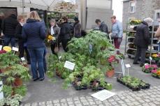 marche_plantes_20180318_41_pepiniere_delhommeau_8646