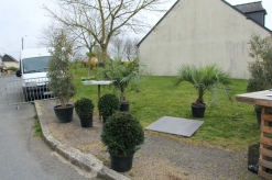 cdf_marcheregionalauxplantes_20220321_20_design_et_jardins_3354