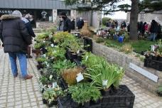 cdf_marcheregionalauxplantes_20220321_31_jardin_de_gwen_3233